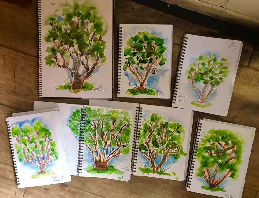 New Sketchers Class Tuesday 6th and Saturday 10th November 2018